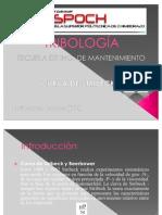58070133-TRIBOLOGIA-CURVA-DE-STRIBECK - copia.pdf