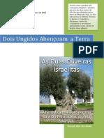 As Duas Oliveiras Israelitas.pdf