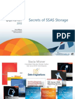 [BIA 300 HD] SecretsSSASStorage Misner