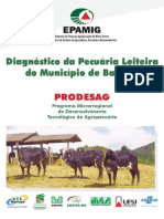 diag_da_pecuaria_leiteira_do_mun_de_barroso.pdf