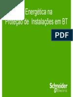 Eficiencia Energetica Na Protecao de Instalacoes Eletricas de Baixa Tensao
