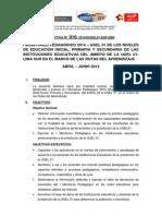 DIRECTIVA 016-2014 02-05-14-Monitoreo Pedagogico 2014