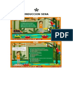 Induccion Sena Trabajo en Word1.