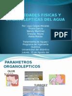 Propiedades Fisicas y Organolépticas Del Agua