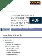Apertura de Punta en la Laminación de Productos Largos - Calidad de Palanquilla o Proceso de Laminación