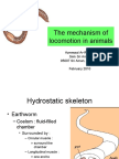 The Mechanism of Locomotion in Animals