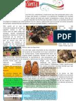 LA SIERRA - Tradiciones y Costumbres