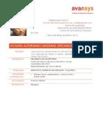 Modelo CV -Avansys 2014 (1) (1)