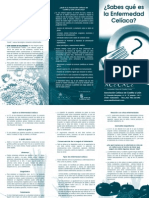 2-folleto_sabes_que_es_la_e.c.pdf