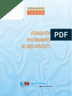 Actualizacion Tratamiento Juego Patologico Fund.gaudium 2007