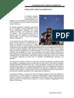 Contaminacion Ambiental e Impacto