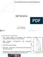 08_SaltTectonics