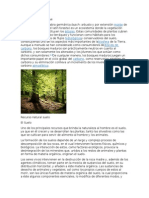 Recurso Natural Bosque y Asentamientos
