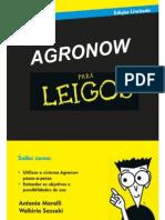 Sistema de Gestão Agronow
