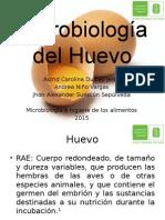 Microbiología Del Huevo Utima Actualización 01 07 2015