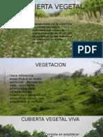 Cubierta Vegetal