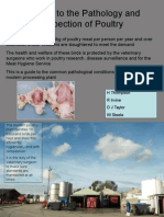 Pathology and Inspection of Poultry 2007