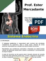 Sistema Endocrino - ETBJ Ituporanga-sc