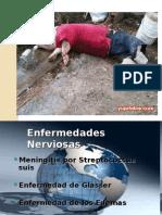 Clase Enfermedades Nerviosas 2014