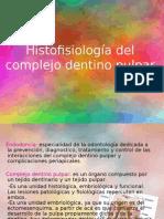 anatomia de endodoncia