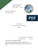 Texto Paralelo Libro Para Comprender El Aprendizaje Sandra Rios