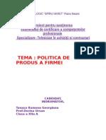 Atestat Politica de Produs