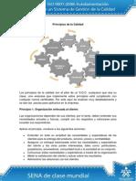 Principios%20de%20la%20Calidad.pdf