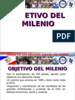 1presentacionesobjetivodelmilenio-120707205551-phpapp01