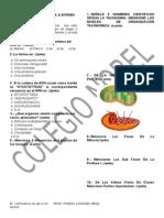 Examen Bimestral de Biología y Ecología