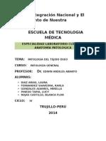 Patologia Del Tejido Oseo
