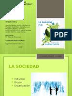 SociedadDS.pptx