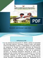 DCN.pptx