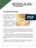 Sinapsis y Neuromarketing