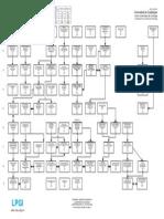 Mapa Curricular NuevoPlan