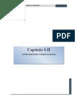CAP 1.  ANTECEDENTES Y CAP 2 MARCO LEGAL.docx