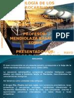 Ppt Lima Metropolitana