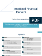 International Financial Markets-sample