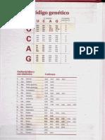 El código genético. Aminoácidos, sus símbolos y codones
