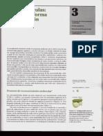 P1-C03 - Macromoléculas. Estructura, forma e información