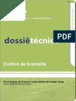 Cultivo de Bromelia
