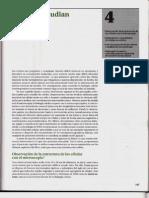 P1-C04 - Cómo se estudian las células