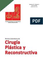 CIRUGÍA PLÁSTICA Y RECONSTRUCTIVA Volumen 21 Nº 1 Junio 2015