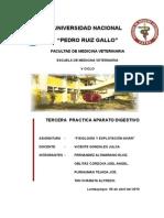 INFORME APARATO  DE DIGESTIVO.doc