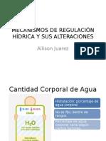 Mecanismos de regulacion hidrica y sus alteraciones.pptx