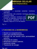 Biomembrana Celular Eucariota 2011