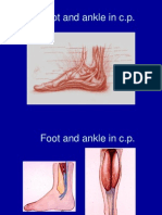 Foot and Ankle in Cp Cairo