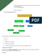 contenidoSN.docx