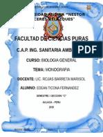 monografia Contaminacion Visual