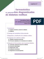 02 Diabetes Mellitus 1