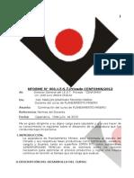 Esquema Informe Cenfomin 140512